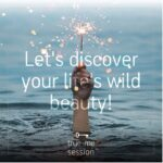 Read more about the article Let's discover your life's wild beauty